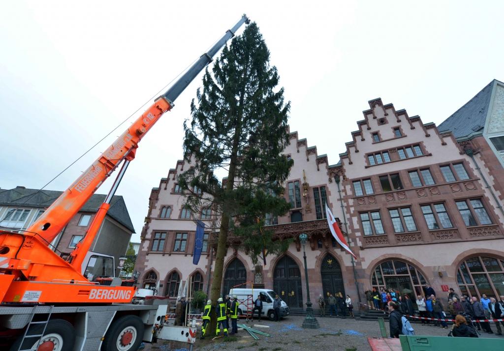 Weihnachtsbaum Frankfurt.Journal Frankfurt Nachrichten Der Weihnachtsbaum Am Römerberg
