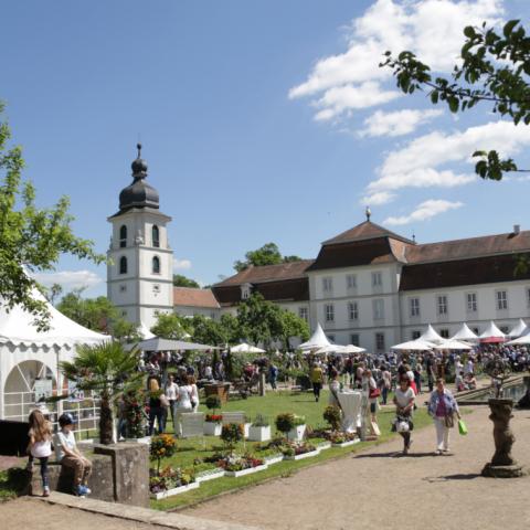 Ausstellung im Schloss Fasanerie