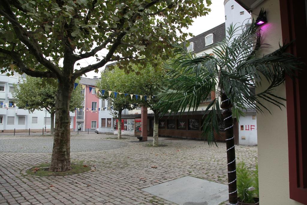 Foto: Archivbild: Harald Schröder